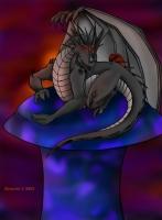 dragonshroom_co_bkfull
