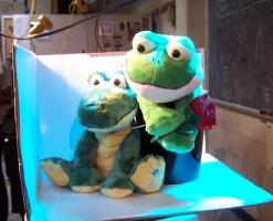 froggie_gator_painting_02